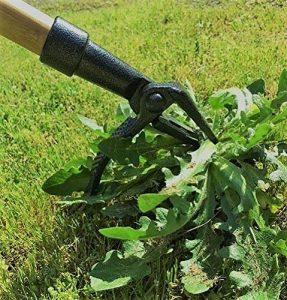 Long Handle Weed Puller